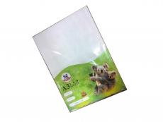 GLOSSY ART CARD 157GSM A3