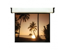 Classic Wall Projection Screen